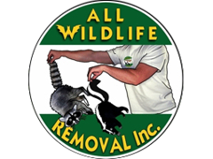All Wildlife Removal